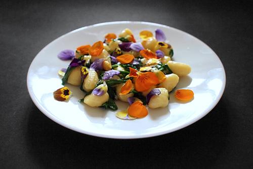 Bramborové noky, máslo, medvědí česnek, violka rohatá